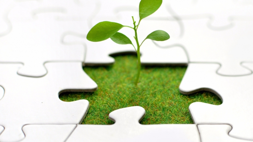 20151125152329-growth-plant-jigsaw-business-hope-plant-puzzle-seed-prosper-success-grass-idea-sprout-strategy-nature