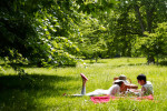 picnic-park--large-msg-136665729095